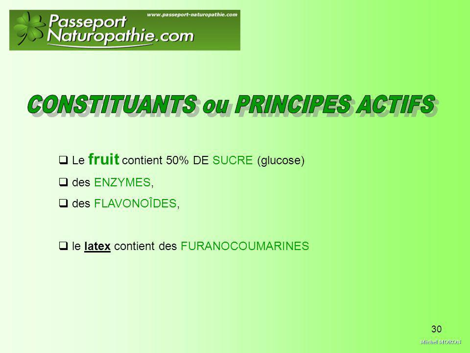 30 Le fruit contient 50% DE SUCRE (glucose) des ENZYMES, des FLAVONOÎDES, le latex contient des FURANOCOUMARINES
