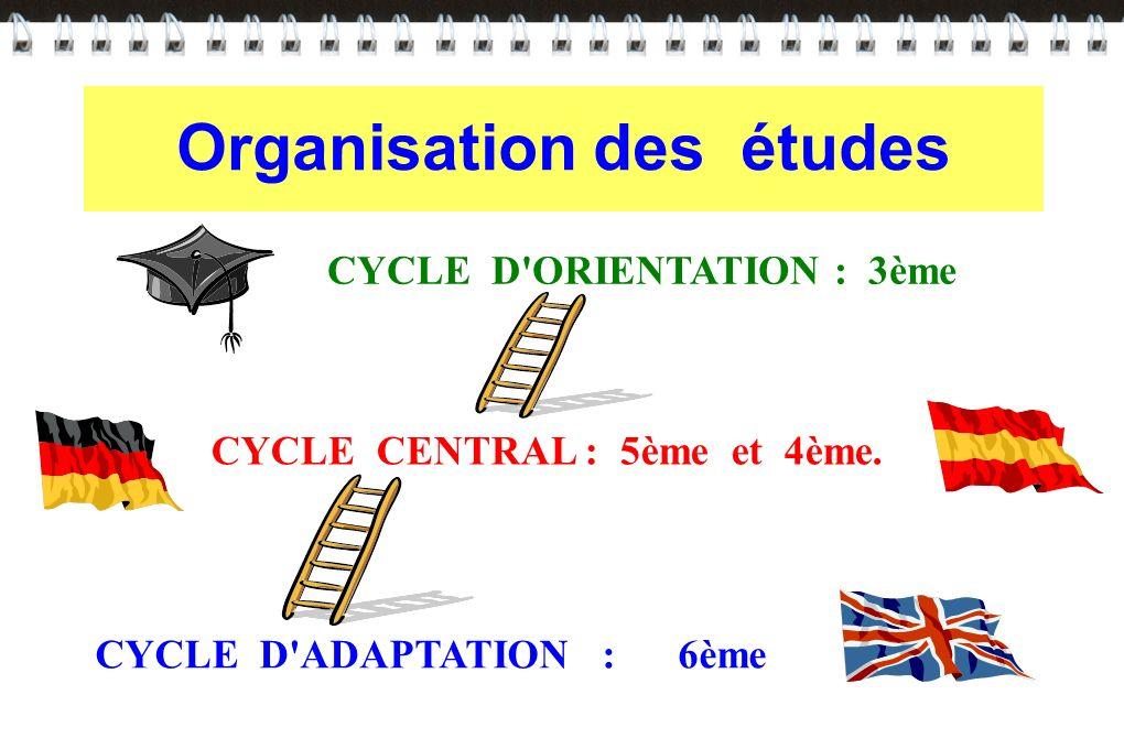 Organisation des études CYCLE D'ADAPTATION : 6ème CYCLE CENTRAL : 5ème et 4ème. CYCLE D'ORIENTATION : 3ème