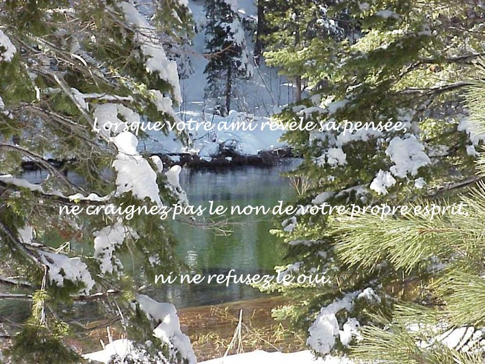 Lorsque votre ami révèle sa pensée, ne craignez pas le non de votre propre esprit, ni ne refusez le oui.