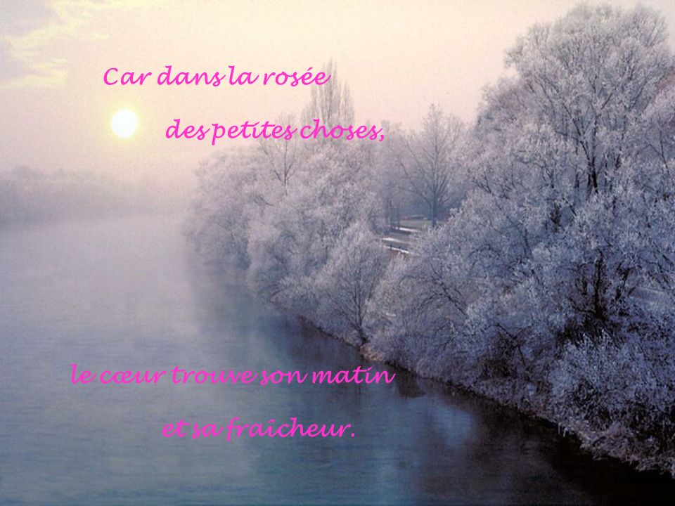 Car dans la rosée des petites choses, le cœur trouve son matin et sa fraîcheur.