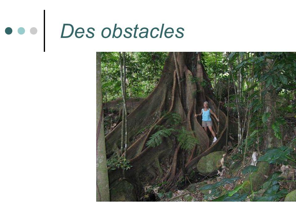 Des obstacles