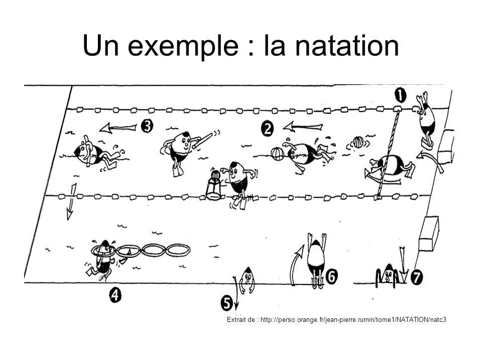Un exemple : la natation Extrait de : http://perso.orange.fr/jean-pierre.rumin/tome1/NATATION/natc3