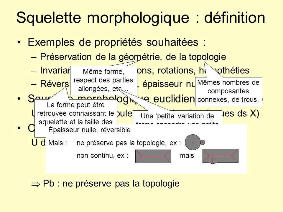 Squelette morphologique : définition Exemples de propriétés souhaitées : –Préservation de la géométrie, de la topologie –Invariance aux translations,