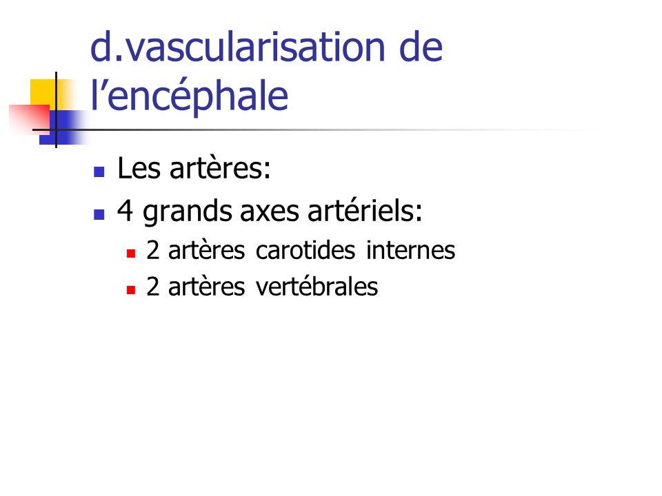 d.vascularisation de lencéphale Les artères: 4 grands axes artériels: 2 artères carotides internes 2 artères vertébrales