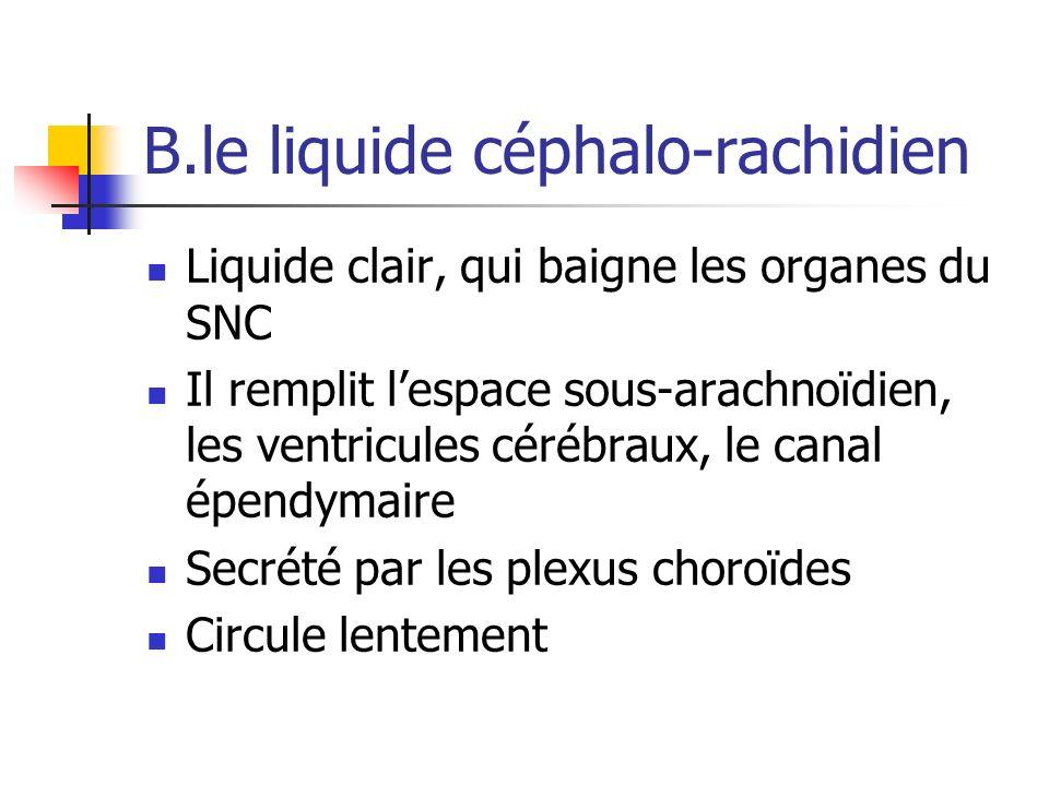 B.le liquide céphalo-rachidien Liquide clair, qui baigne les organes du SNC Il remplit lespace sous-arachnoïdien, les ventricules cérébraux, le canal épendymaire Secrété par les plexus choroïdes Circule lentement