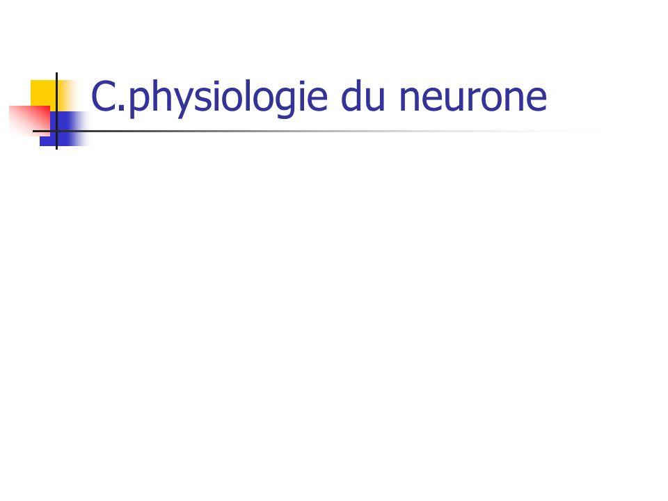 C.physiologie du neurone