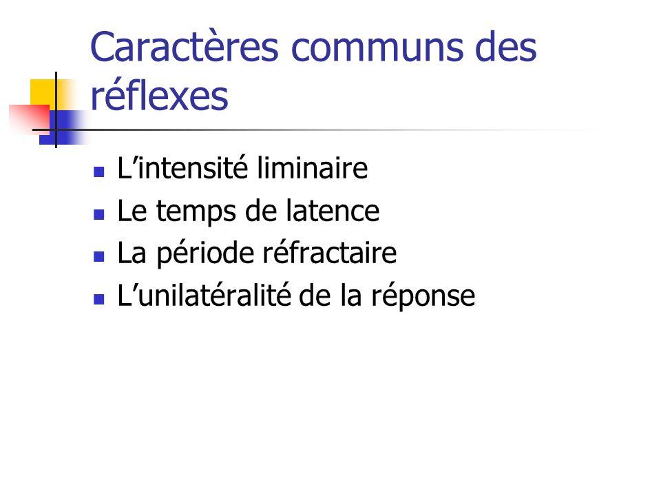 Caractères communs des réflexes Lintensité liminaire Le temps de latence La période réfractaire Lunilatéralité de la réponse