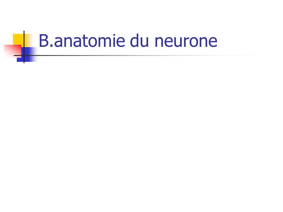 C.physiologie du neurone