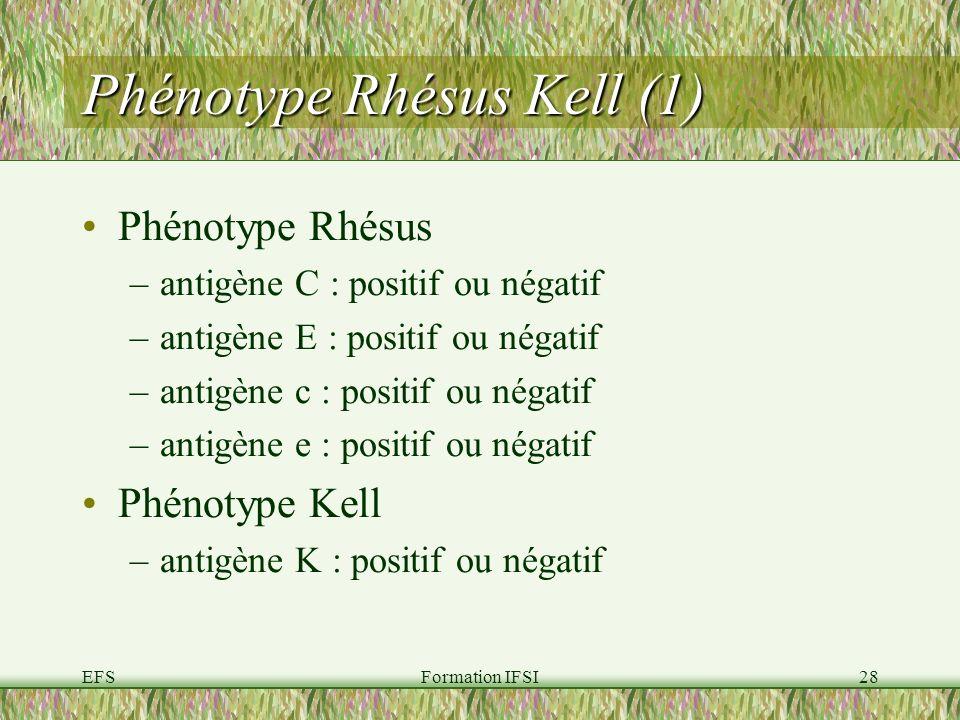 EFSFormation IFSI28 Phénotype Rhésus Kell (1) Phénotype Rhésus –antigène C : positif ou négatif –antigène E : positif ou négatif –antigène c : positif ou négatif –antigène e : positif ou négatif Phénotype Kell –antigène K : positif ou négatif