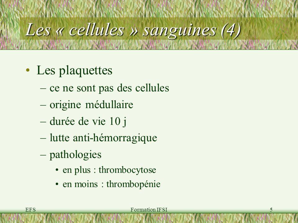 EFSFormation IFSI5 Les « cellules » sanguines (4) Les plaquettes –ce ne sont pas des cellules –origine médullaire –durée de vie 10 j –lutte anti-hémorragique –pathologies en plus : thrombocytose en moins : thrombopénie
