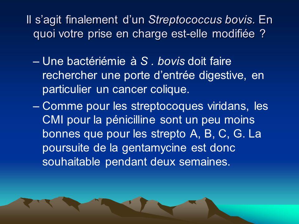 –Une bactériémie à S. bovis doit faire rechercher une porte dentrée digestive, en particulier un cancer colique. –Comme pour les streptocoques viridan