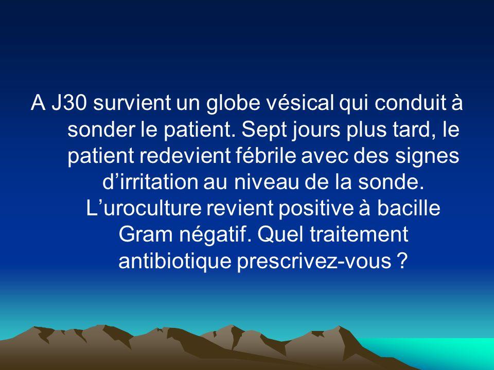 A J30 survient un globe vésical qui conduit à sonder le patient. Sept jours plus tard, le patient redevient fébrile avec des signes dirritation au niv