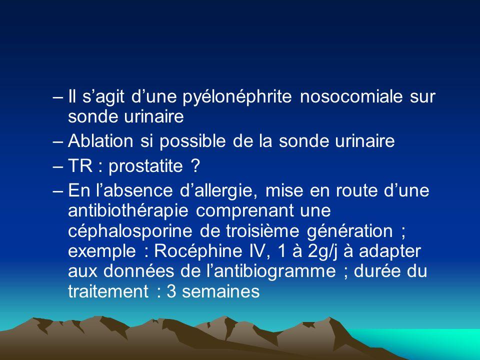 –Il sagit dune pyélonéphrite nosocomiale sur sonde urinaire –Ablation si possible de la sonde urinaire –TR : prostatite ? –En labsence dallergie, mise