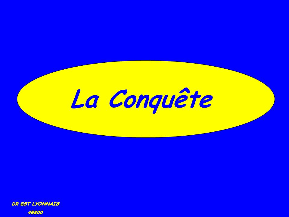 DR EST LYONNAIS 45800 La Conquête
