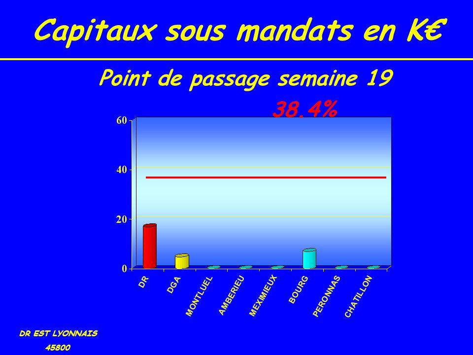 Capitaux sous mandats en K DR EST LYONNAIS 45800 38.4% Point de passage semaine 19
