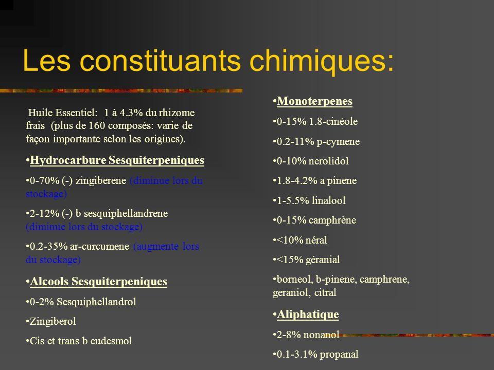 Les constituants chimiques: Huile Essentiel: 1 à 4.3% du rhizome frais (plus de 160 composés: varie de façon importante selon les origines). Hydrocarb