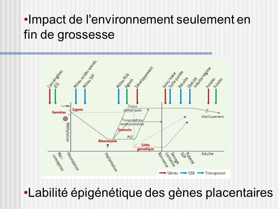 Impact de l'environnement seulement en fin de grossesse Labilité épigénétique des gènes placentaires