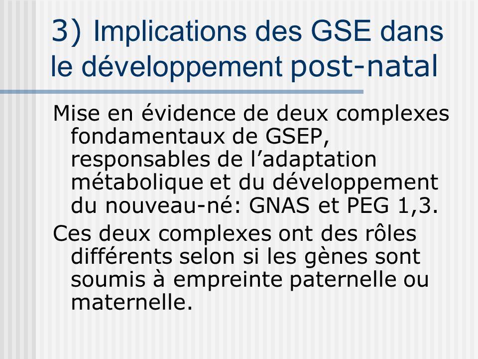 3) Implications des GSE dans le développement post-natal Mise en évidence de deux complexes fondamentaux de GSEP, responsables de ladaptation métaboli