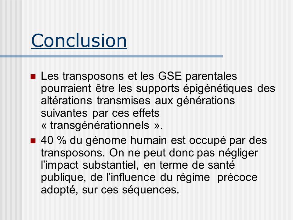 Conclusion Les transposons et les GSE parentales pourraient être les supports épigénétiques des altérations transmises aux générations suivantes par c