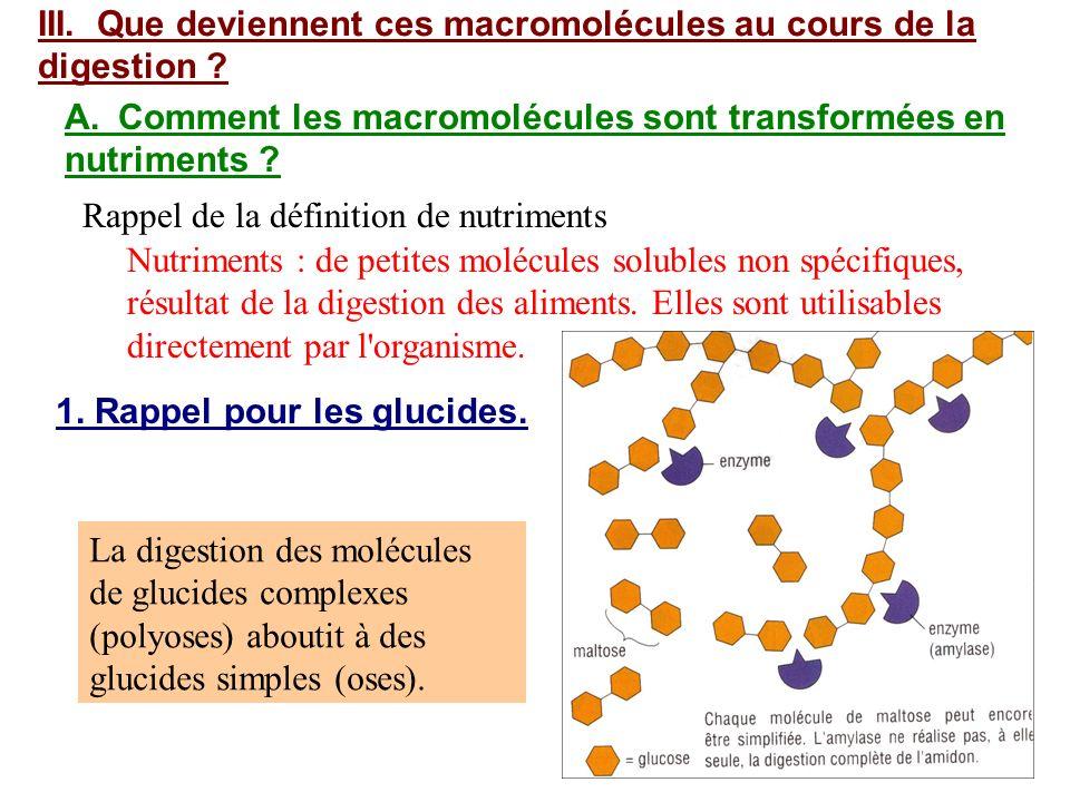 III. Que deviennent ces macromolécules au cours de la digestion ? A.Comment les macromolécules sont transformées en nutriments ? Nutriments : de petit