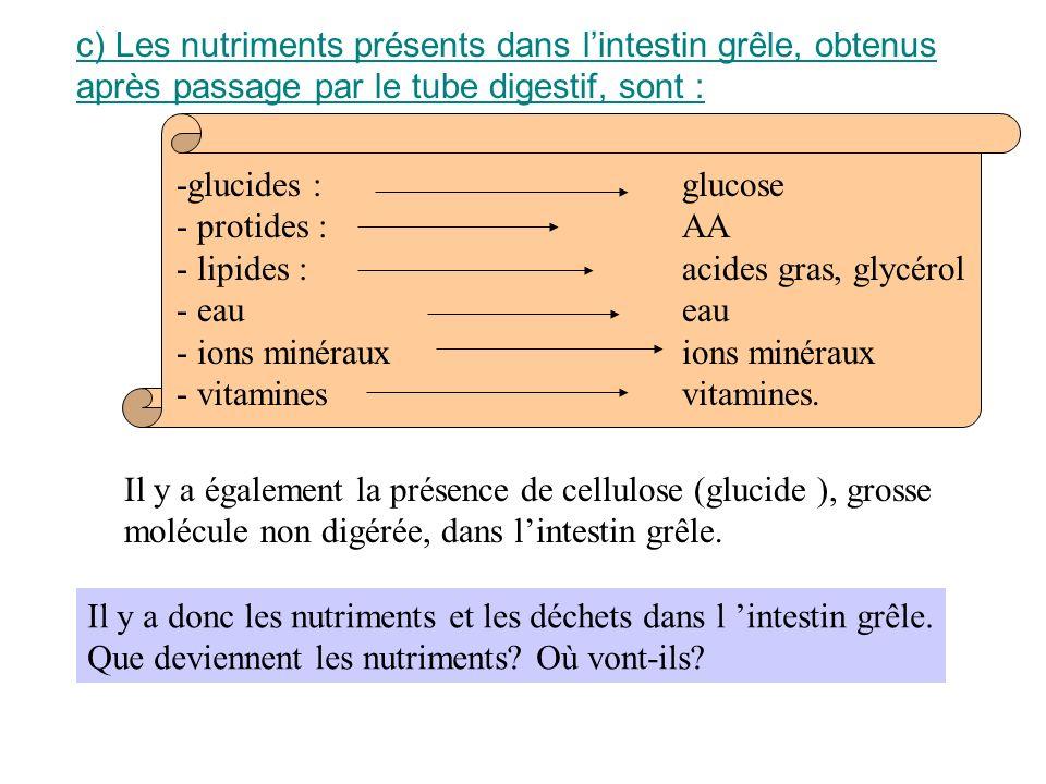 c)Les nutriments présents dans lintestin grêle, obtenus après passage par le tube digestif, sont : -glucides : - protides : - lipides : - eau - ions m