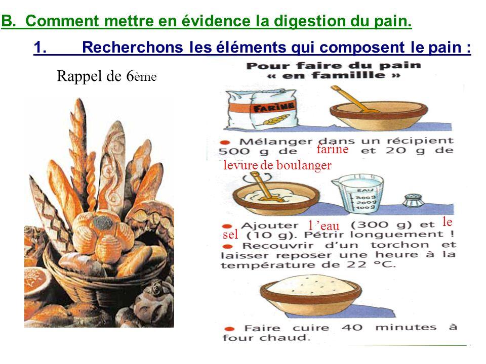 B.Comment mettre en évidence la digestion du pain. 1.Recherchons les éléments qui composent le pain : Rappel de 6 ème farine levure de boulanger l eau