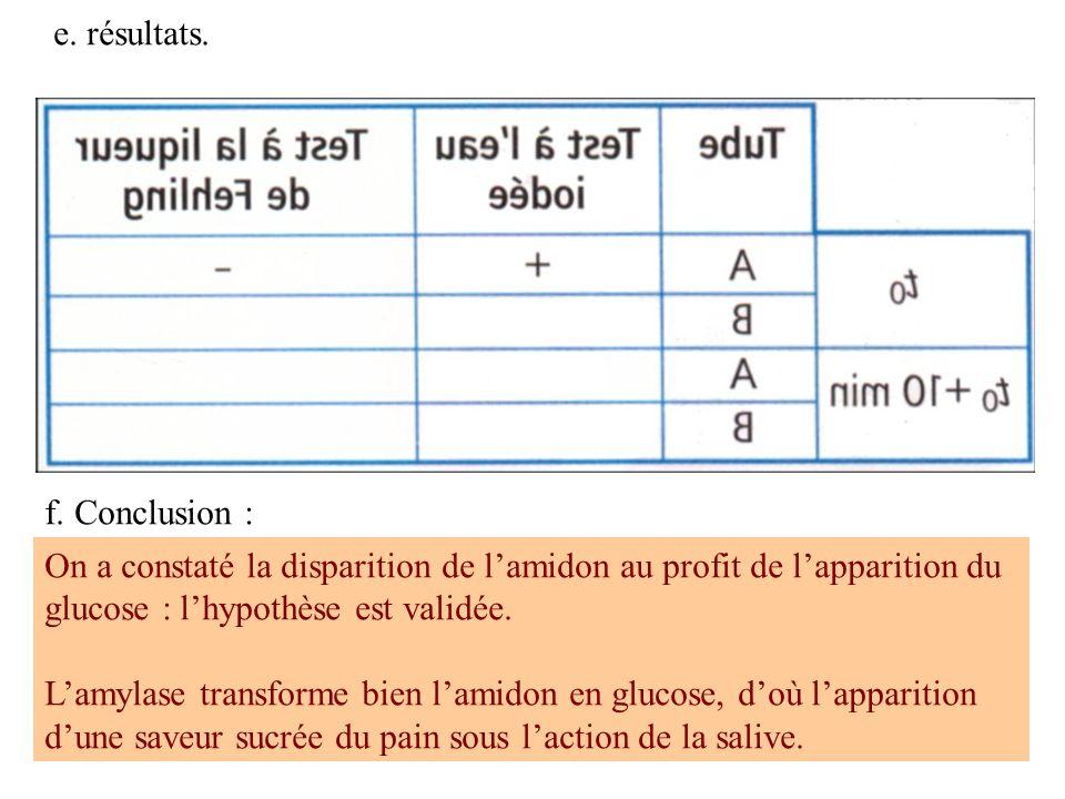 e. résultats. f. Conclusion : On a constaté la disparition de lamidon au profit de lapparition du glucose : lhypothèse est validée. Lamylase transform