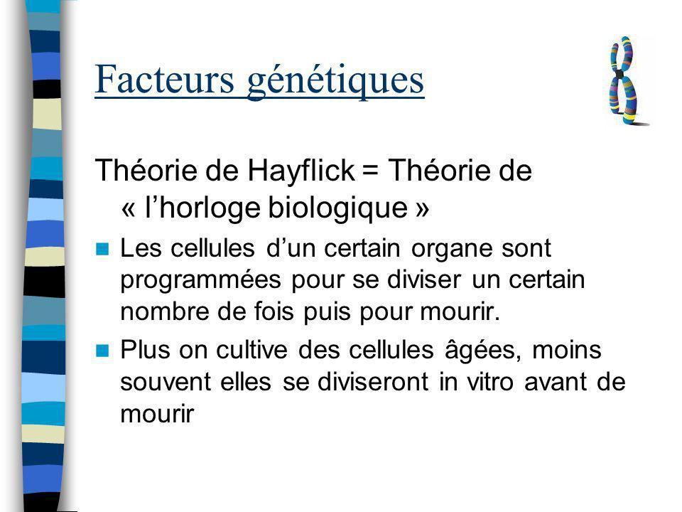 Facteurs génétiques Théorie de Hayflick = Théorie de « lhorloge biologique » Les cellules dun certain organe sont programmées pour se diviser un certa