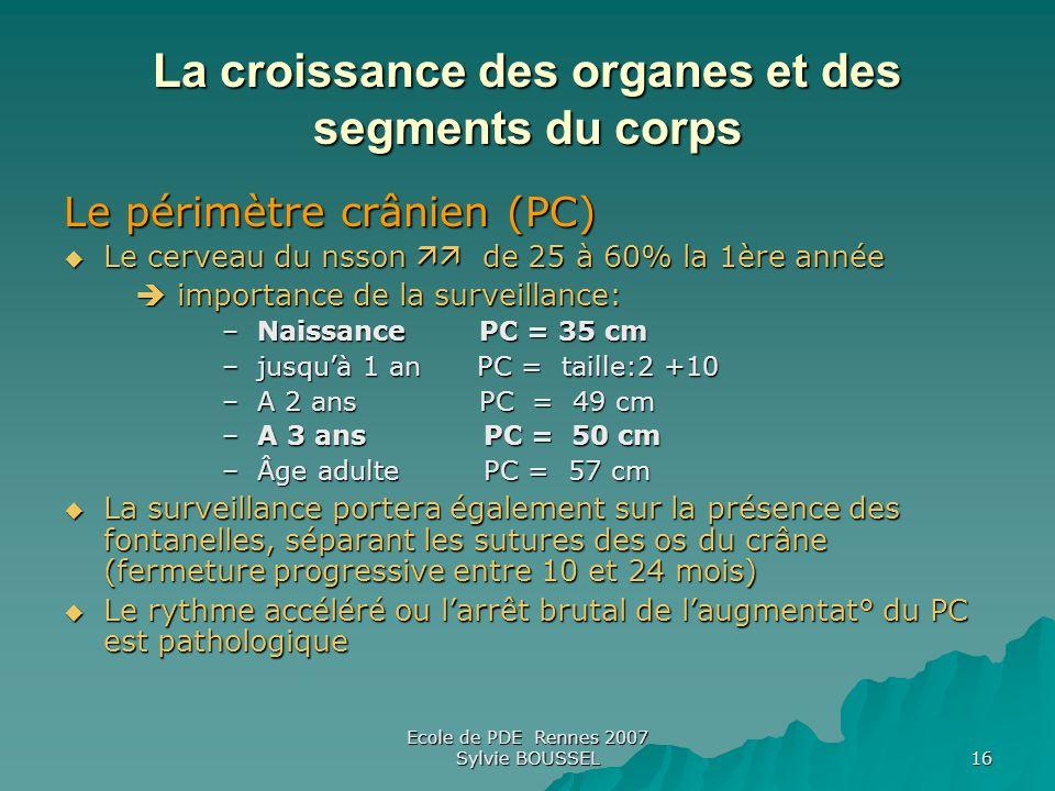 Ecole de PDE Rennes 2007 Sylvie BOUSSEL 16 La croissance des organes et des segments du corps Le périmètre crânien (PC) Le cerveau du nsson de 25 à 60