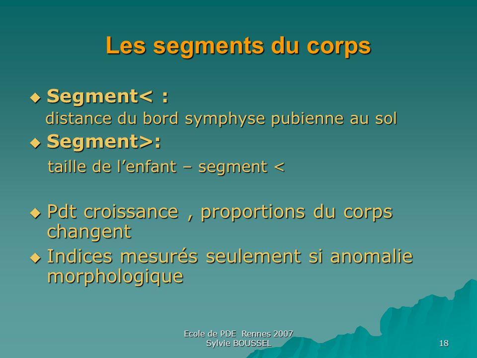 Ecole de PDE Rennes 2007 Sylvie BOUSSEL 18 Les segments du corps Segment< : Segment< : distance du bord symphyse pubienne au sol distance du bord symp