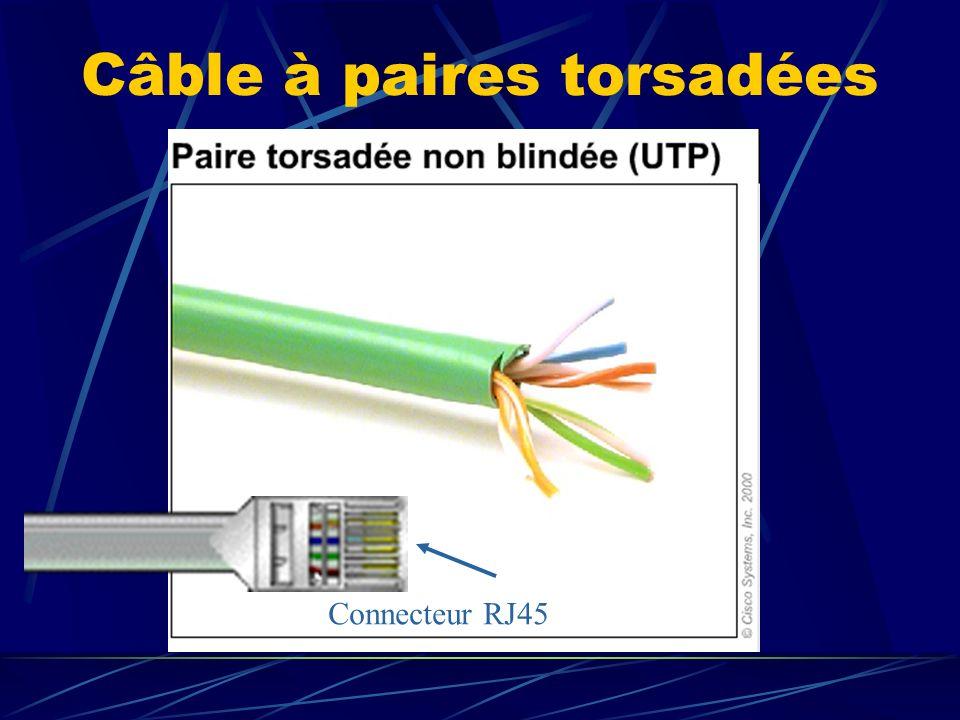 Câble à paires torsadées Connecteur RJ45