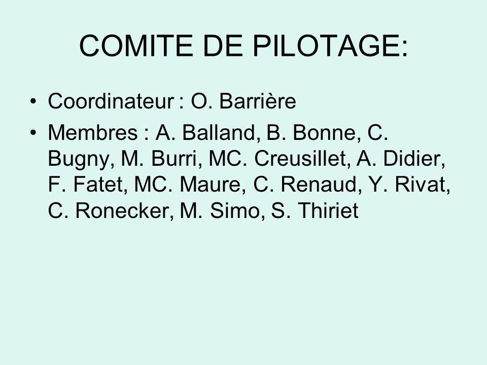 COMITE DE PILOTAGE: Coordinateur : O. Barrière Membres : A.