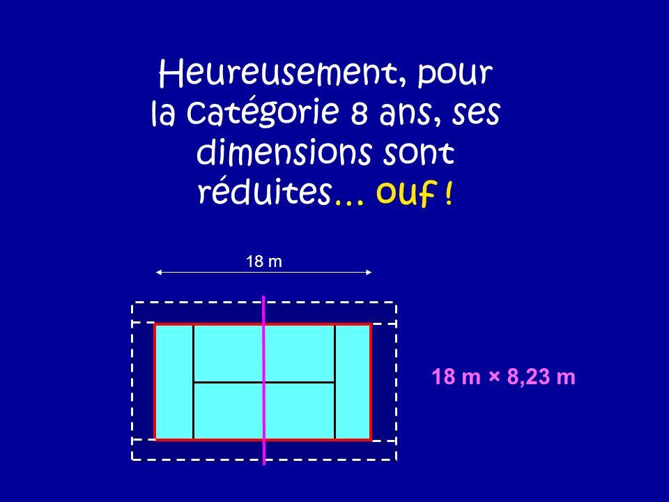 Heureusement, pour la catégorie 8 ans, ses dimensions sont réduites… ouf ! 18 m 18 m × 8,23 m