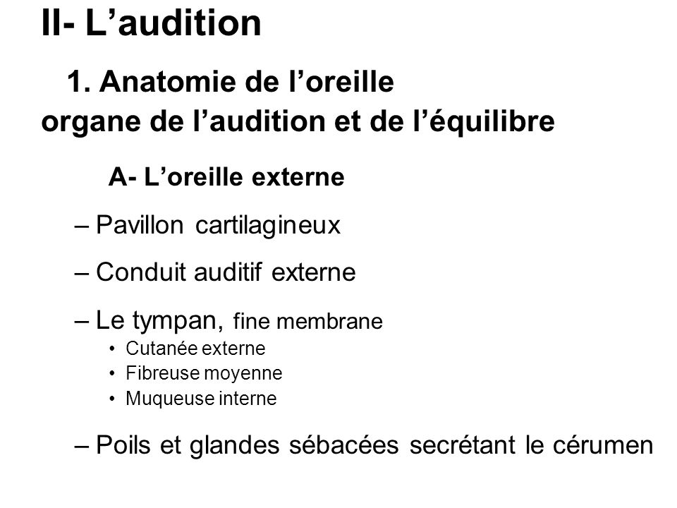 II- Laudition 1. Anatomie de loreille organe de laudition et de léquilibre A- Loreille externe –Pavillon cartilagineux –Conduit auditif externe –Le ty