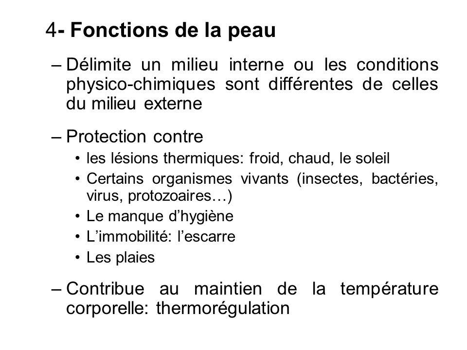 4- Fonctions de la peau –Délimite un milieu interne ou les conditions physico-chimiques sont différentes de celles du milieu externe –Protection contr