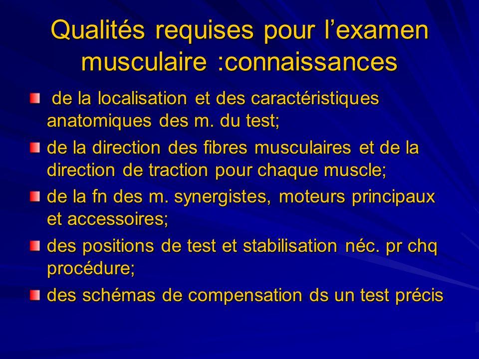 Qualités requises pour lexamen musculaire :connaissances de la localisation et des caractéristiques anatomiques des m. du test; de la localisation et