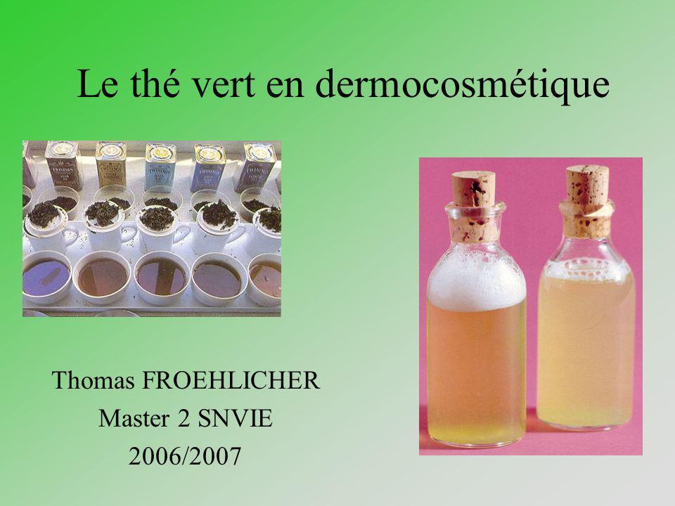 Le thé vert en dermocosmétique Thomas FROEHLICHER Master 2 SNVIE 2006/2007