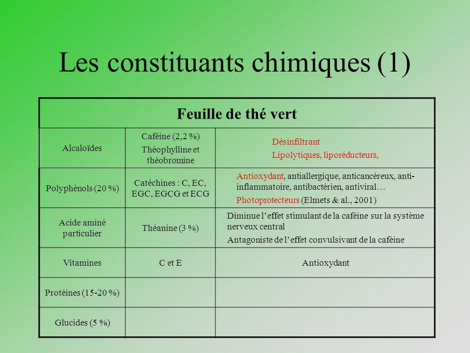 Les constituants chimiques (1) Feuille de thé vert Alcaloïdes Caféine (2,2 %) Théophylline et théobromine Désinfiltrant Lipolytiques, liporéducteurs,