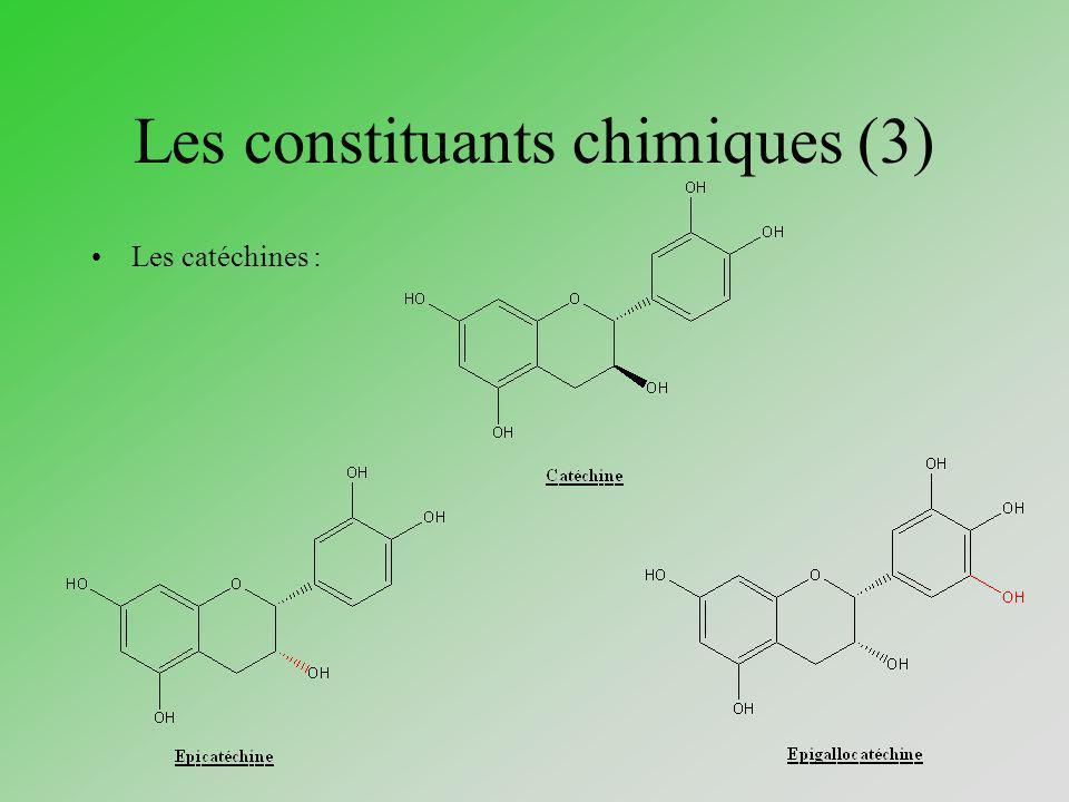 Les constituants chimiques (4) Les catéchines (suite) :