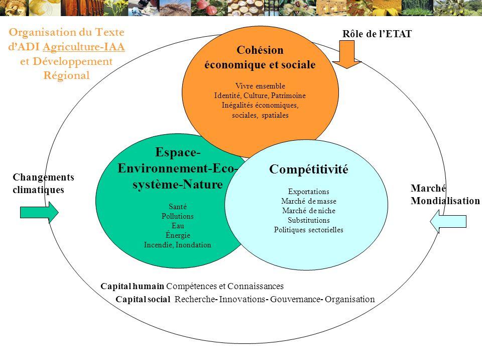 Organisation du Texte dADI Agriculture-IAA et Développement Régional Capital humain Compétences et Connaissances Capital social Recherche- Innovations