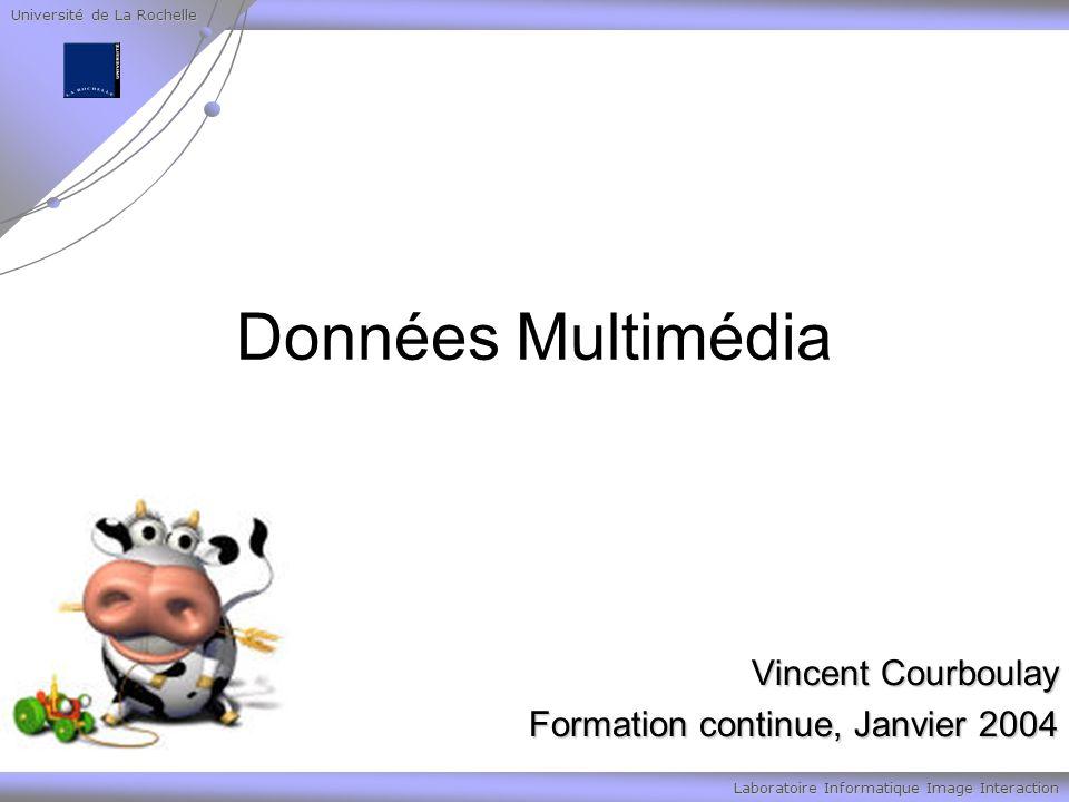 Université de La Rochelle Laboratoire Informatique Image Interaction Données Multimédia Vincent Courboulay Formation continue, Janvier 2004