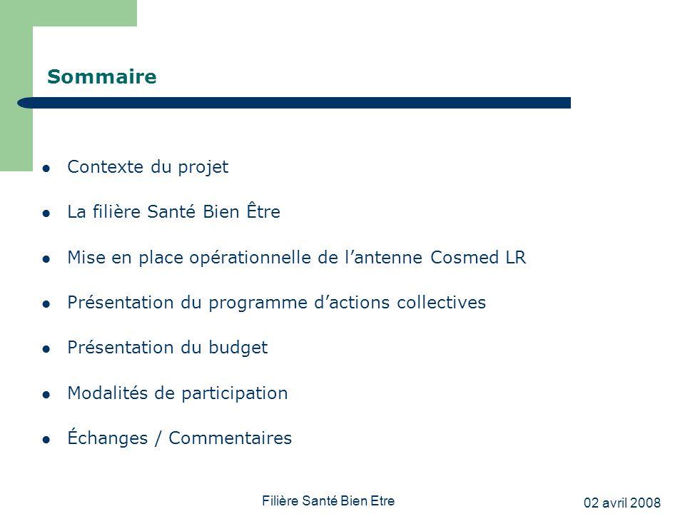 02 avril 2008 Filière Santé Bien Etre Sommaire Contexte du projet La filière Santé Bien Être Mise en place opérationnelle de lantenne Cosmed LR Présen