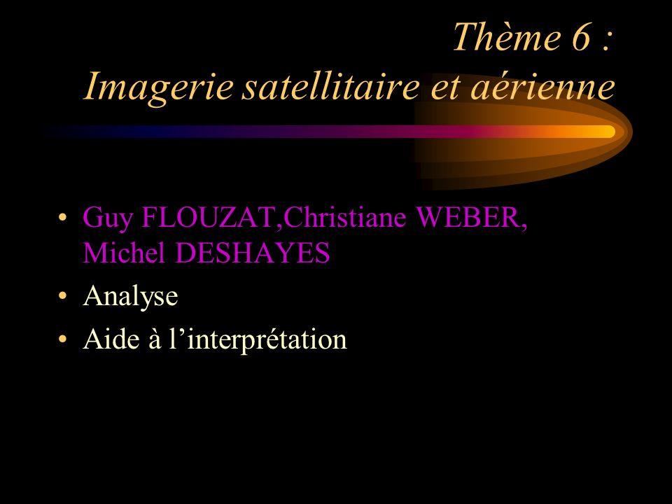 Thème 6 : Imagerie satellitaire et aérienne Guy FLOUZAT,Christiane WEBER, Michel DESHAYES Analyse Aide à linterprétation