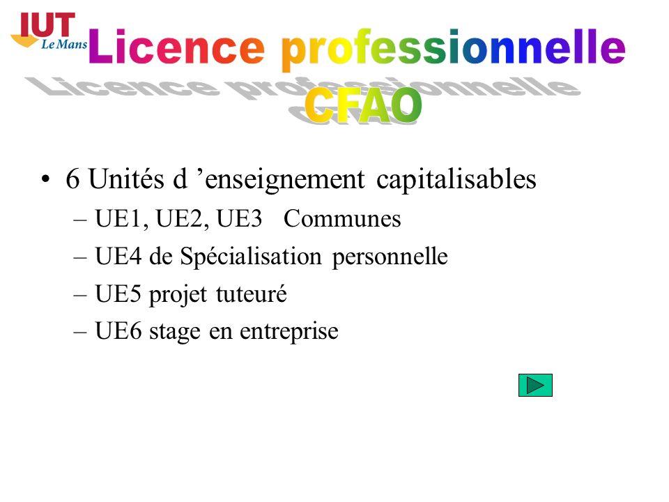 6 Unités d enseignement capitalisables –UE1, UE2, UE3 Communes –UE4 de Spécialisation personnelle –UE5 projet tuteuré –UE6 stage en entreprise