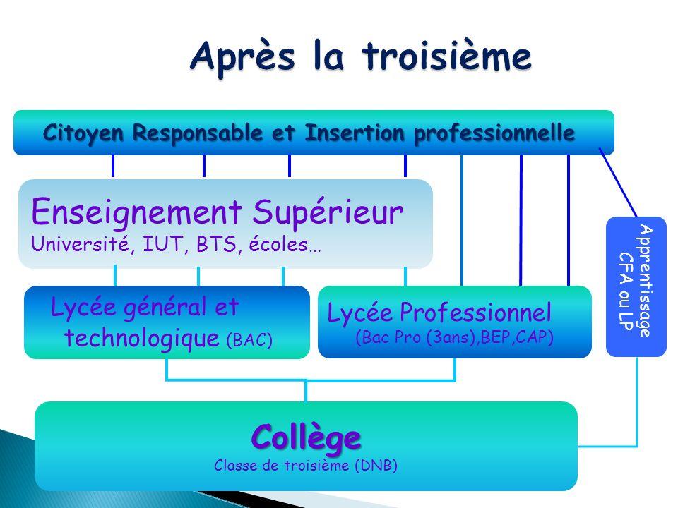 Collège Classe de troisième (DNB) Enseignement Supérieur Université, IUT, BTS, écoles… Citoyen Responsable et Insertion professionnelle Apprentissage