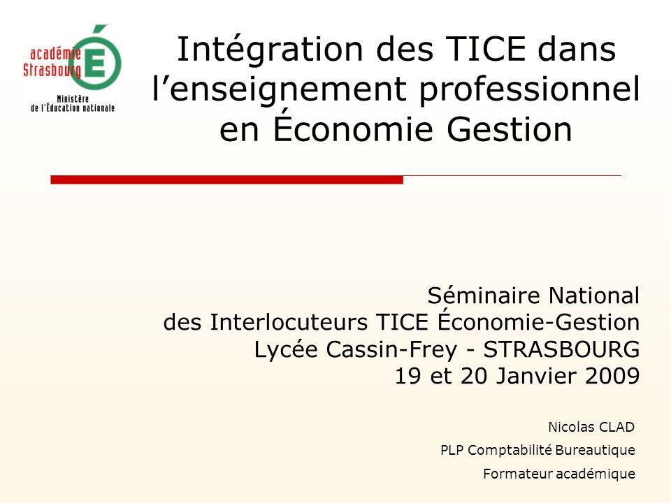 Intégration des TICE dans lenseignement professionnel en Économie Gestion Séminaire National des Interlocuteurs TICE Économie-Gestion Lycée Cassin-Fre