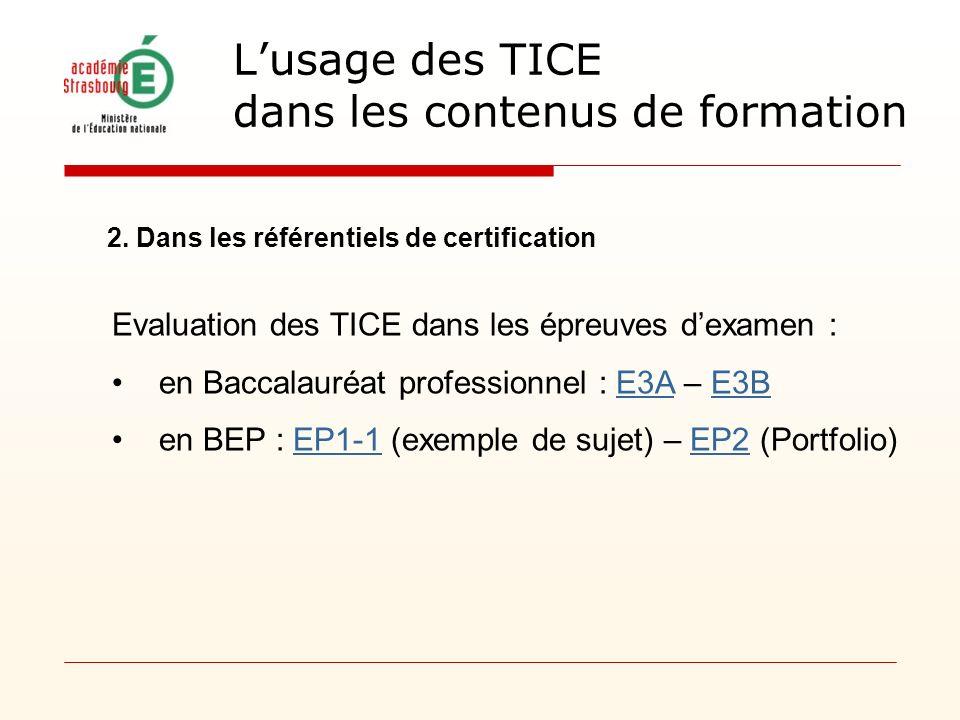 2. Dans les référentiels de certification Evaluation des TICE dans les épreuves dexamen : en Baccalauréat professionnel : E3A – E3BE3AE3B en BEP : EP1