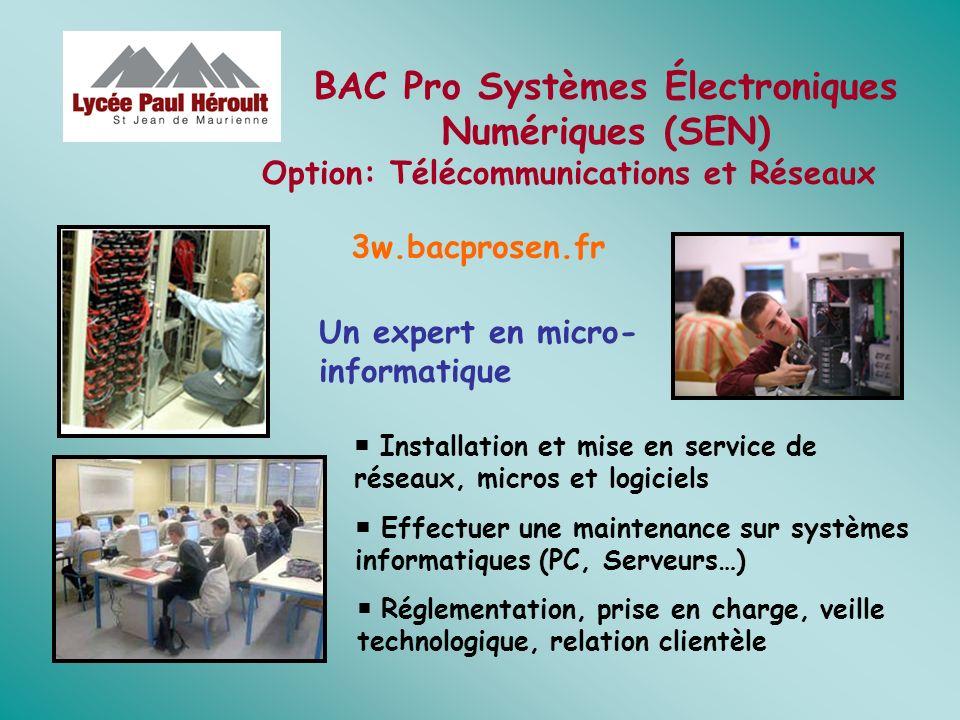 Installation et mise en service de réseaux, micros et logiciels Un expert en micro- informatique Effectuer une maintenance sur systèmes informatiques