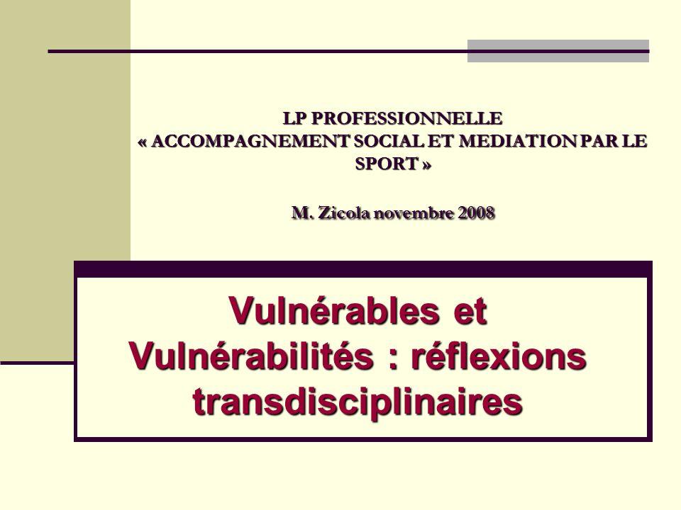 LP PROFESSIONNELLE « ACCOMPAGNEMENT SOCIAL ET MEDIATION PAR LE SPORT » M. Zicola novembre 2008 Vulnérables et Vulnérabilités : réflexions transdiscipl