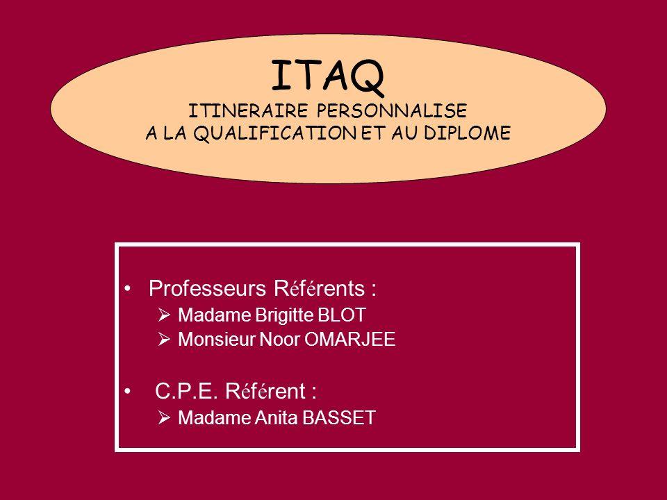 ITAQ Objectif : Lutter contre le d é crochage et les abandons pr é matur é s de scolarit é.